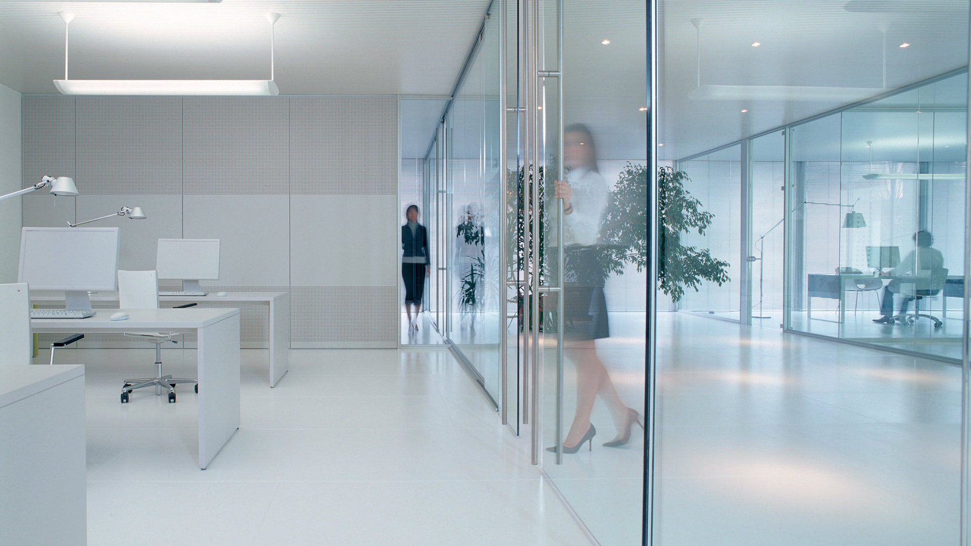 Glass doors and partitions 1