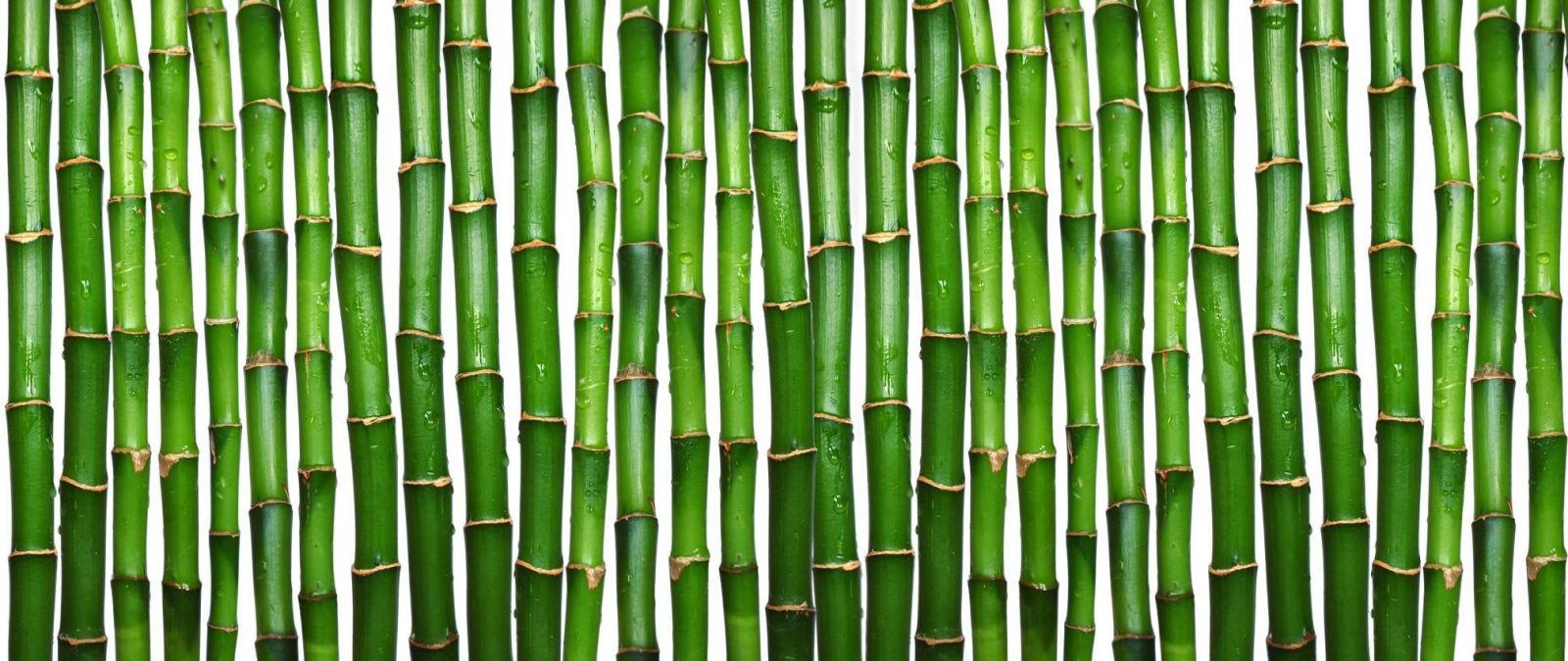 Bamboo blinds 1