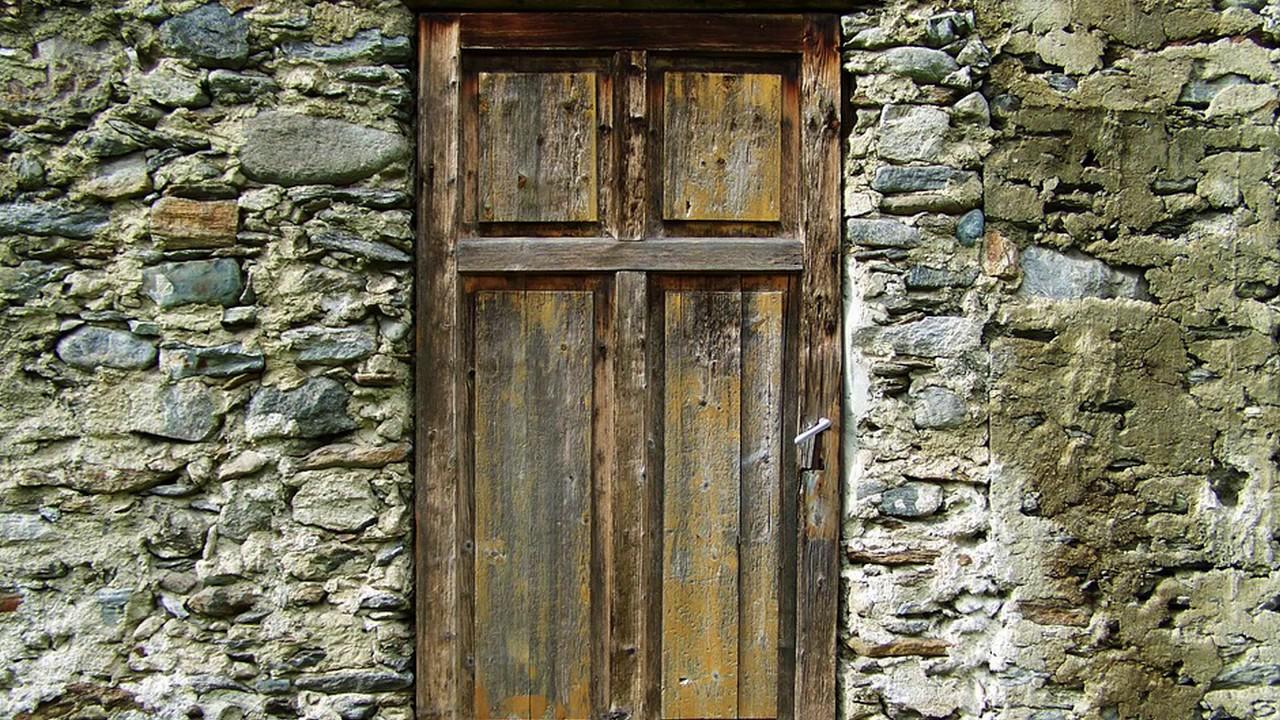 Aluminium doors 1